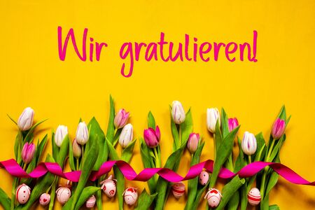 Tulip, Wir Gratulieren Means Congratulations, Easter Egg, Yellow Background Zdjęcie Seryjne