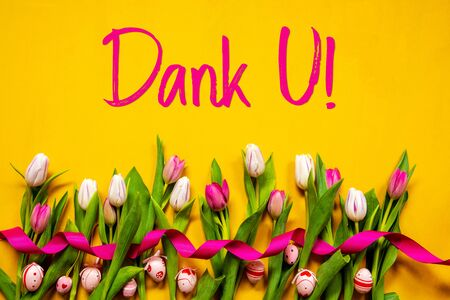 Colorful Tulip, Dank U Means Thank You, Easter Egg, Yellow Background Stock Photo