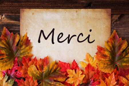 Old Paper With Text Merci Means Thank You, Colorful Leaves Decoration
