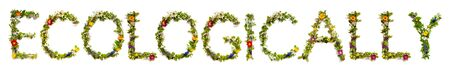 Flower And Blossom Letter Building Word Ecologically Stockfoto