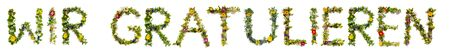 Flower And Blossom Letter Building Word Wir Gratulieren Means Congratulations Zdjęcie Seryjne