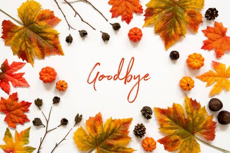 Bright Colorful Autumn Leaf Decoration, English Text Goodbye