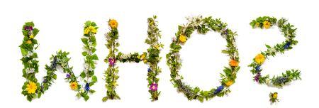 Flower And Blossom Letter Building Word Who Reklamní fotografie