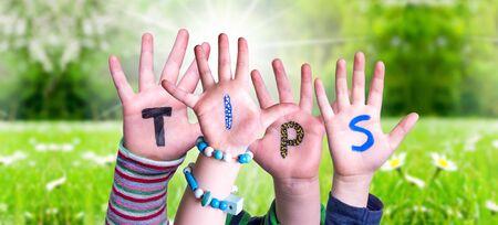 Children Hands Building Word Tips, Grass Meadow Imagens