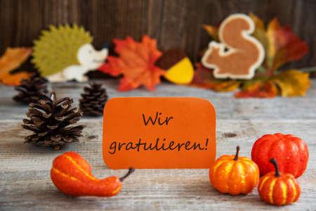 Orange Label With German Text Wir Gratulieren Means Congratulations. Autumn Decoration Like Pumpkin, Hedgehog And Squirrel