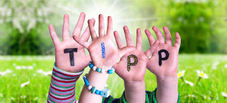 Children Hands Building Colorful German Word Tipp Means Tip. Sunny Green Grass Meadow As Background Imagens