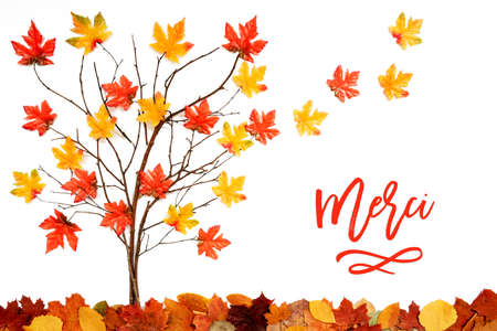 Tree With Colorful Leaf Decoration, Leaves Flying Away, Merci Means Thank You Stockfoto