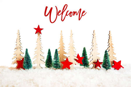 Christmas Tree, Snow, Red Star, Text Welcome