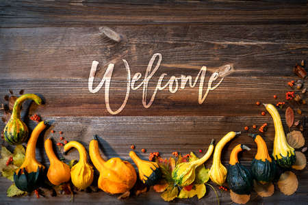 Colorful Pumpkins As Autumn Season Decoration, Text Welcome