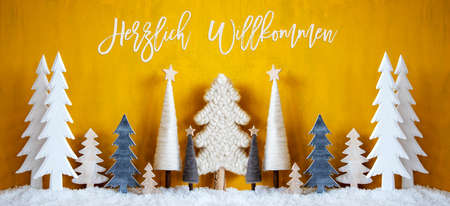 Banner, Christmas Trees, Snow, Yellow Background, Willkommen Means Welcome Banque d'images