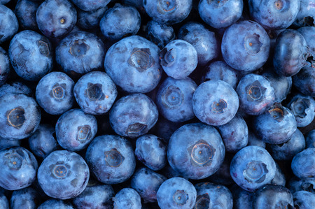 Freshly picked blueberries. nature background
