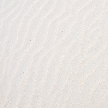 natural pattern: Sand texture. nature background