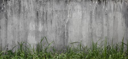 old concrete wall pattern with grass, natural texture background Standard-Bild - 141621389