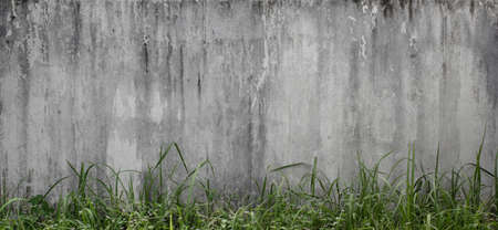 old concrete wall pattern with grass, natural texture background