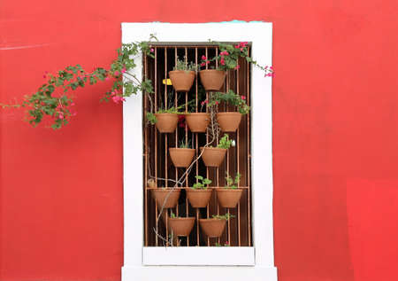 San Juan - Flowers in the window photo