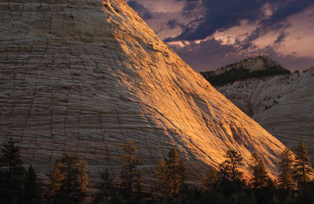 Scenic Zion Park Scenic Landscapes at sunset