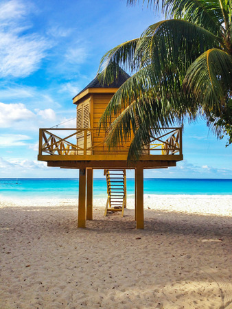 baywatch: Baywatch tower in tropical beach