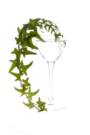 bocal: White glass bocal with green leaves isolated Stock Photo