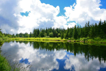 blue mountain lake with forest coniferous forest photo