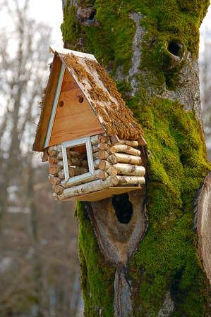 bird-box Stock Photo