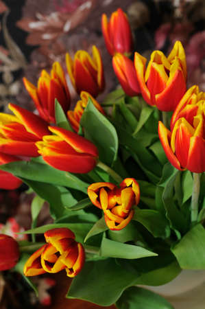 beautiful bouquet from red tulips closeup, focus on tulip