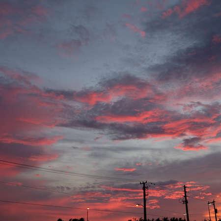 raddish: Raddish sunset Stock Photo