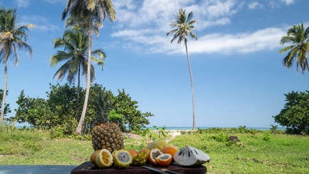 Tropical fruits on paradise landscape