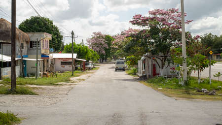 Yucatan, Mexico - February 23rd, 2018: Street view of small village with grass and trees in bloosom