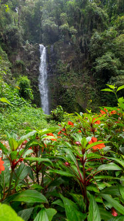 Waterfall at the 3 lost waterfalls trail in Boquete, Panama Stock Photo