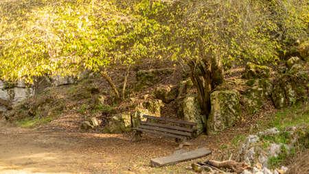 A walk throught the Arcotete park, Chiapas, Mexico Stock Photo