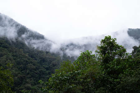 Podocarpus National Park, Ecuador, view of rainforest mountains in the mist