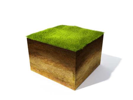 3d ilustracją przekroju ziemi z trawy samodzielnie na białym tle