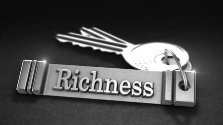 richness: Richness Concept. Keys with Keyring. 3D rendering