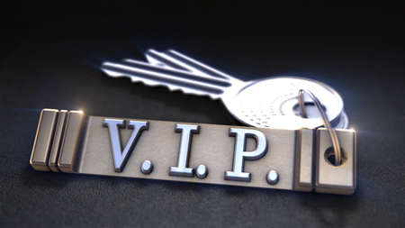 considerate: VPI Concept. Keys with Keyring. 3D rendering Stock Photo