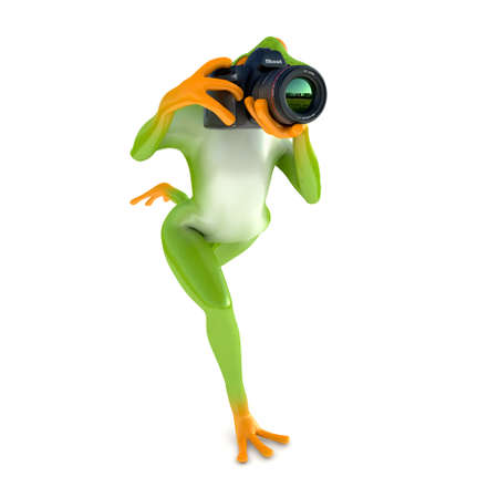 tropical frog: Tropical frog posing with a camera, isolated on white background