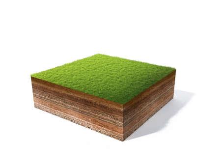 3D-afbeelding van de doorsnede van de grond met gras op wit wordt geïsoleerd