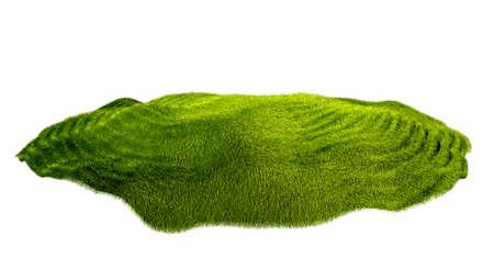 piece of grass isolated on white background Reklamní fotografie - 51702500