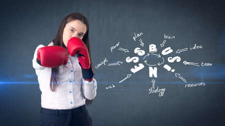 battle plan: Woman in red boxing gloves standing near wall with a business idea sketch drawn on it. Concept of a successful business.