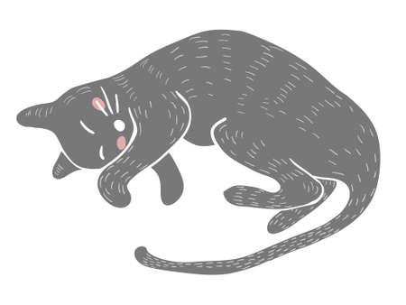 Vector Sleeping lovely gray cat isolated on white