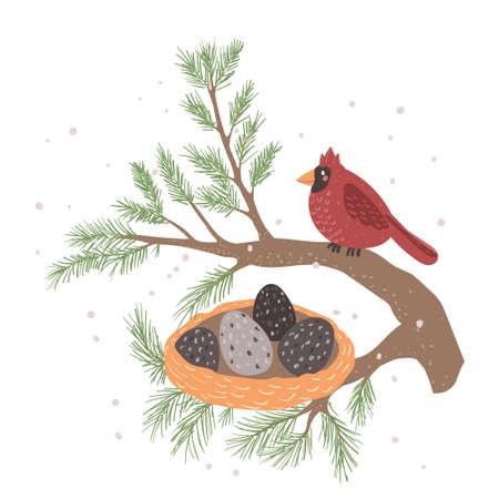 Red Cardinal bird on a winterberry branch vector