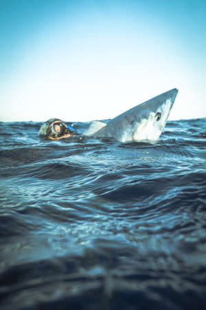 A spear fisherman with a prized wahoo Stock Photo