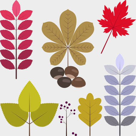 Set of flat design autumn icons 01