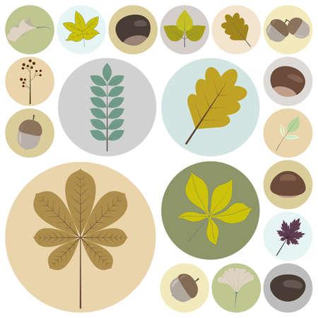 Set of flat design natural elements Çizim