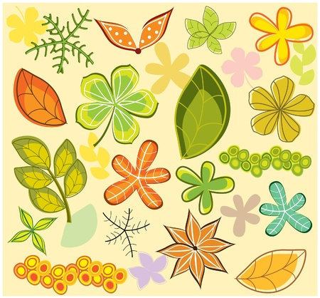 autumn leaves elements Vector