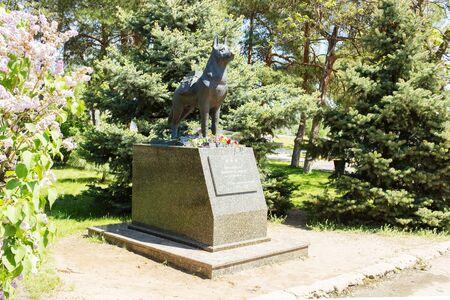 VOLGOGRAD, RUSSIA - April 29, 2016: A monument to the guard dog exterminating in the years of war of fascist aggressors. Chekistov Square, Volgograd, Russia