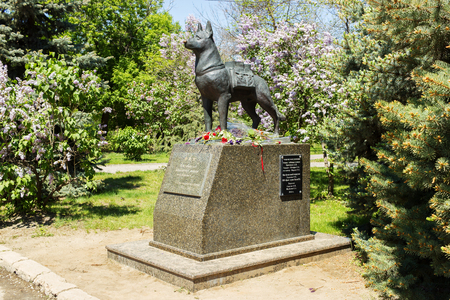 german fascist: VOLGOGRAD, RUSSIA - April 29, 2016: A monument to the guard dog exterminating in the years of war of fascist aggressors. Chekistov Square, Volgograd, Russia