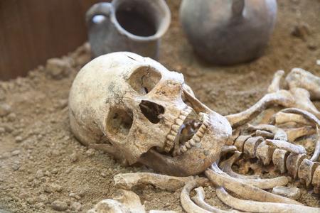 TAGANROG, RUSSIE - 26 juin 2017: les restes d'un squelette de la personne ancienne trouvée lors de fouilles dans le musée archéologique Tanais Éditoriale