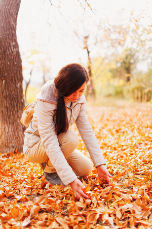 The girl in the autumn park collects yellow dry leaves