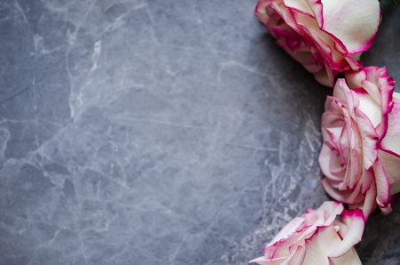 Roses on dark marble background with place for text. Flat lay.
