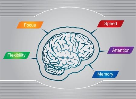 Geheimnisse des Gehirns - abstrakte Darstellung Illustration